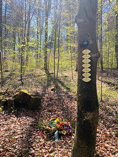 Kristina Schray Trauerrednerin Waldbestattung